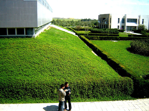 green campus