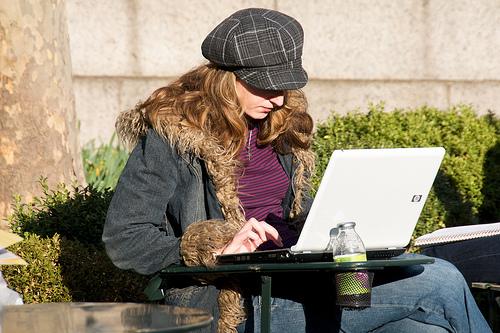 Online degree student